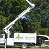 On Call Tree Service