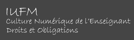 Culture Numérique de l'enseignant - Droits et Obligations | TICE, Web 2.0, logiciels libres | Scoop.it