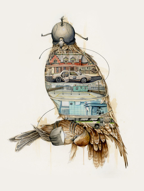 The #Natural and #Urban Collide in the #Drawings of Pat Perry. #art #illustration | Luby Art | Scoop.it