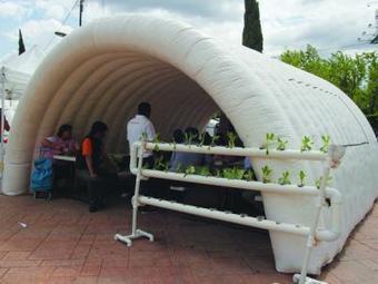 Impulsan agricultura urbana | Cultivos Hidropónicos | Scoop.it