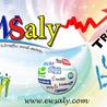 ewsaly.com