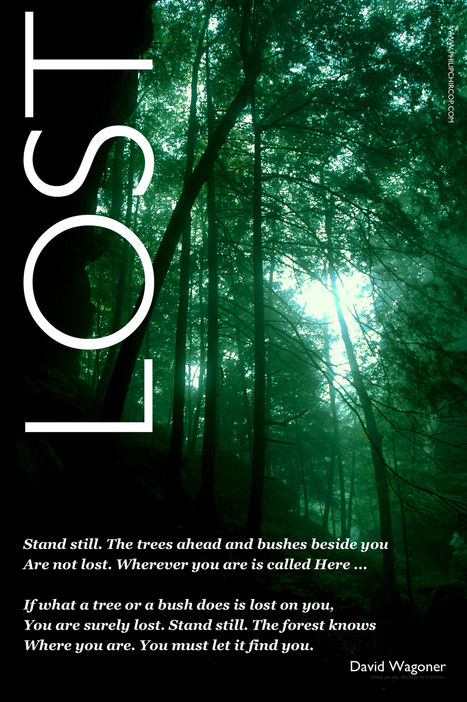 LOST...a lovely poem to contemplate and...   CALM   Scoop.it