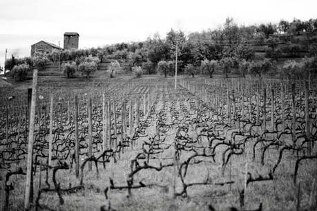 WINE REPORTER - Tenuta di Valgiano e la storia della biodinamica: dove molto ebbe inizio. Ovvero Valgianistan, Reporter Gourmet | Route des vins | Scoop.it