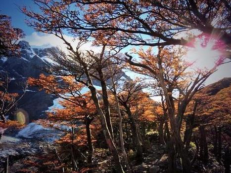 French Valley, Torres del Paine National Park | Trekking | Scoop.it