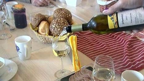 Connaissez-vous le vin hollandais ? - France 3 | Autour du vin | Scoop.it