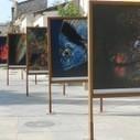 Exhibition: Maniera Cypria: Lemesos, Fabula, Historia, Memoria ... | Wine Cyprus | Scoop.it
