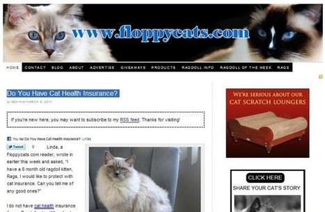 ProBlogger: Inside the Compendium Blogging Platform | Blogs, Blogging and Bloggers. | Scoop.it