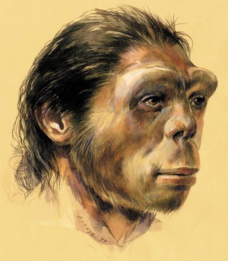 Frise chronologique histoire et archéologie, de la préhistoire à nos jours | Aux origines | Scoop.it