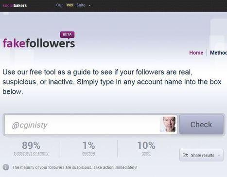 Twitter : A quoi joue exactement un certain expert en réputation et influence digitale ?   Web, E-tourisme & Co   Scoop.it
