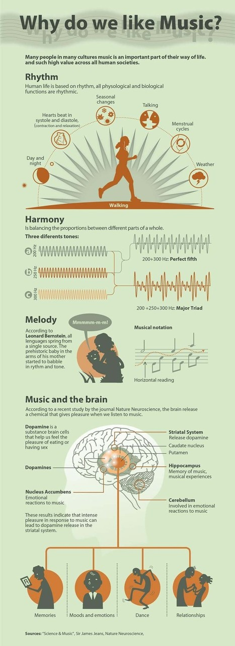 Infographic-Why-Do-We-Like-Music.jpg (800x2193 pixels) | Science, Technology and Society | Scoop.it