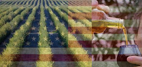 Un curso aborda el nuevo reglamento para exportar a EEUU relativo a los controles preventivos de alimentos para el consumo humano   Jus d'Olive   Scoop.it