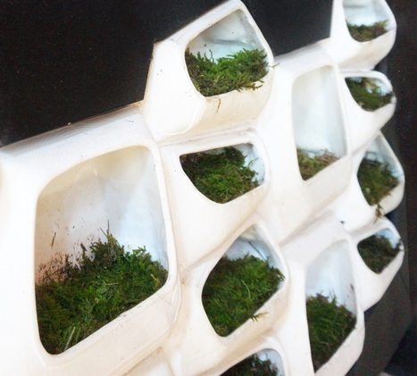 This Modular Green Wall System Generates Electricity From Moss | Sustainability Science | Scoop.it