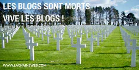 Les blogs sont morts, vive les blogs ! - La Chaine Web | Médias sociaux & web marketing | Scoop.it