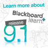 Blackboard 9.1 user guides