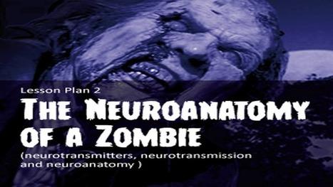 The Zombie Autopsies | The Neuroanatomy of a Zombie | Homeschooling High School | Scoop.it