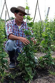 Sede Palmira de la Universidad Nacional, líder en formación de agrónomos en el país   ACIUP   Scoop.it