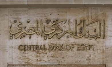 Egypt's net FDI rises 54.6% to $6.4 bn in fiscal year 2014/15: CBE - Economy - Business - Ahram Online | Invest in Africa | Scoop.it