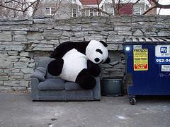 Panda, The Big Google Data Purge   SEO Tips, Advice, Help   Scoop.it