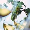 Le vin pour les débutants