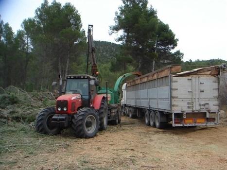 El Plan especial para la biomasa forestal contempla actuaciones en 5.179 has. de montes públicos durante 4 anualidades | Actualidad forestal cerca de ti | Scoop.it