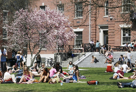 What Isn't Broken in American Higher Education? | Alison Pendergast | Scoop.it