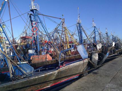 L'accord de pêche Maroc-Europe de nouveau en discussion