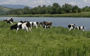 Un Rhône méconnu à découvrir | Tourisme en pays viennois | Scoop.it