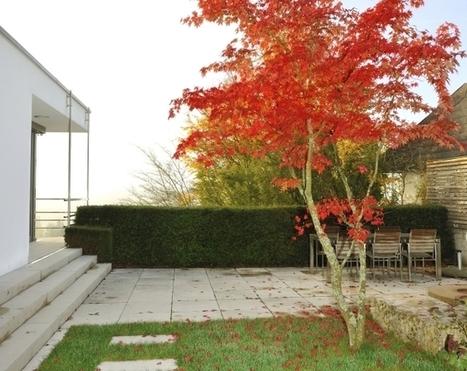 Jardines modernos minimalistas Hogar Total