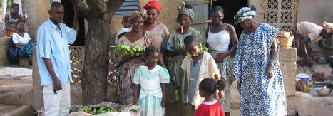 Pour des agricultures familiales prospères | Matière agricole | Scoop.it