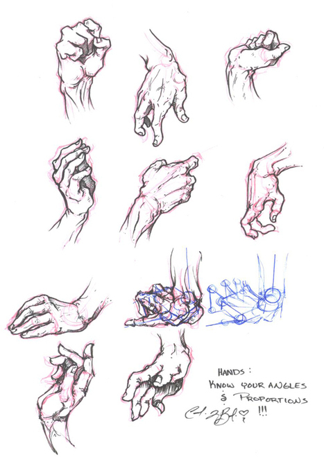 hand study visual reference guide drawing re