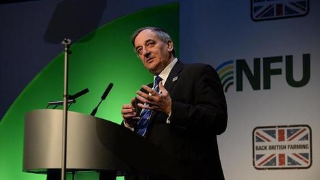 NFU demands urgency from Defra over badger cull roll out | Bovine TB, badgers and cattle | Scoop.it