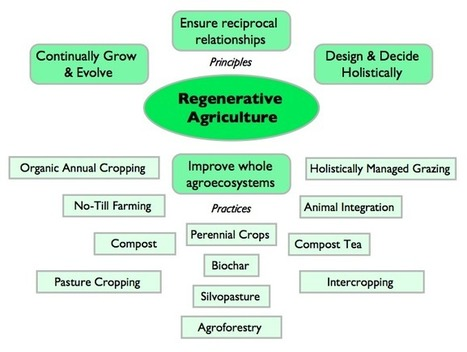 Regenerative Agriculture Redefined | Ethan Roland | Cultibotics | Scoop.it