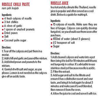 Make it a habit | Bangkok Post: food | forest gardening | Scoop.it