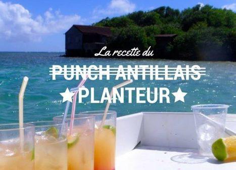 Pour toutes les personnes qui veulent réussir un punch antillais   Voyage Martinique   Scoop.it