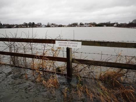 UK weather: Floods could have devastating environmental impact – as animals drown or die from lack of food | Nature Animals humankind | Scoop.it