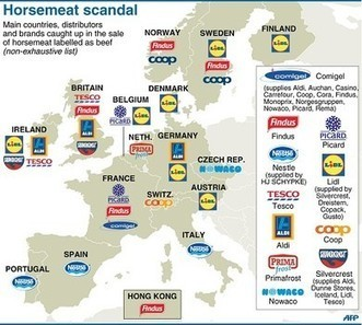 EU horse meat scandal exposes dangers of globalism | Mrs. Nesbitt's Human Geography World | Scoop.it