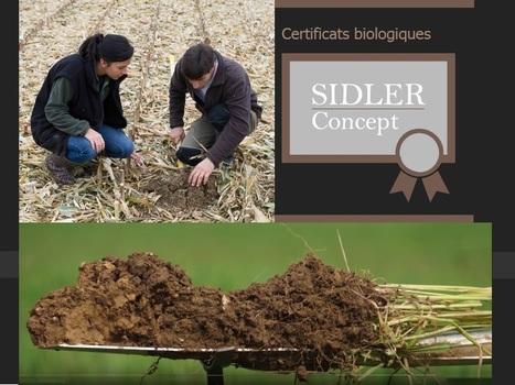 Le test à la bêche avec produits Plocher G lisiers : évaluation du sol avec SIDLER Concept | SPATEN   Test Bêche | Scoop.it
