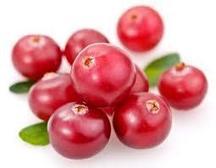 Le Cranberry | A la Une, Aliments et sport | IRBMS | alimentation et santé du coureur by Kelrun.fr | Scoop.it