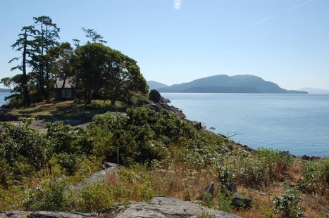 New | 1.7 Acre | Fane Island, BC | Luxury Real Estate Canada | Scoop.it