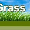 Artificial Turf Gilbert AZ - Uplift the aesthetic value of your home