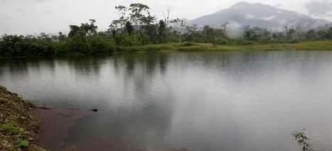 Estanques llenos de mercurio por una sed de oro descontrolada en la Amazonía de Ecuador - 20minutos.es | MOVUS | Scoop.it