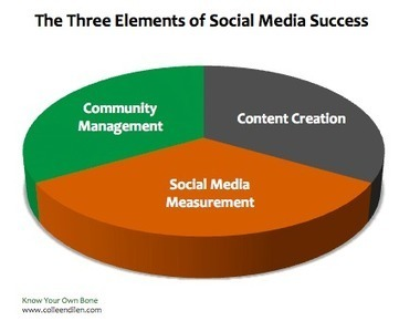 The New Normal: Three Elements of Social Media Success for Nonprofit Organizations | Museums and Digital Media | Scoop.it