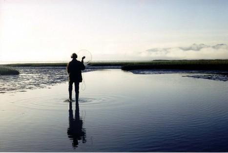 Safari sonore en Camargue avec Bernard Fort | DESARTSONNANTS - CRÉATION SONORE ET ENVIRONNEMENT - ENVIRONMENTAL SOUND ART - PAYSAGES ET ECOLOGIE SONORE | Scoop.it