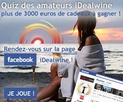 Chinon Rouge | BLOG VIN | Le blog d'iDealwine sur l'actualité du vin | Accord Mets-Vins avec les vins de Loire | Scoop.it