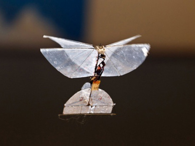 Spy-Butterfly: Israel developing insect drone for indoor surveillance — RT | Drones & robots | Scoop.it