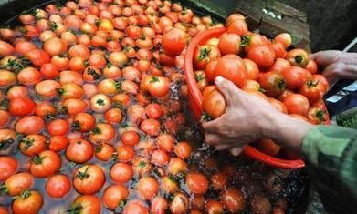 Pulp fiction: Asda's 'made in Italy' tomato puree hails from China | di Cotte e di Crude | Scoop.it