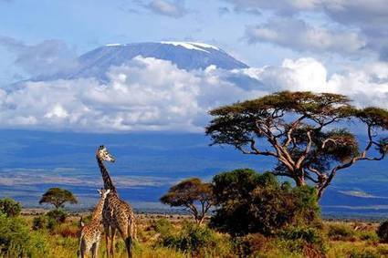 Kilimanjaro in Tanzania, the highest stand alone mountain in the... | Interesting Photos | Scoop.it