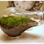DIY Recycled Lightbulb Terrarium Ornaments For Truly Green Gift Giving | HTM_DIY - Artesanías | Scoop.it
