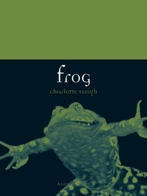Frogs - Late Night Live - ABC Radio National (Australian Broadcasting Corporation) | this curious life | Scoop.it