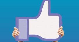 Free Professional Network | Free Professional Network | Scoop.it